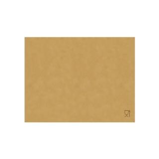 Carta paglia per alimenti neutra cm 25x37