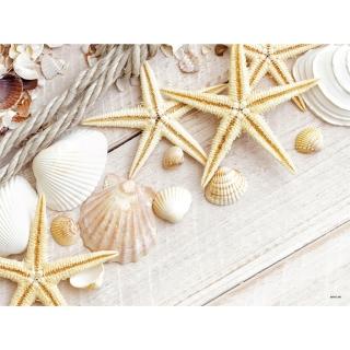 Tovaglietta 30x40 Sea Shells gr.60