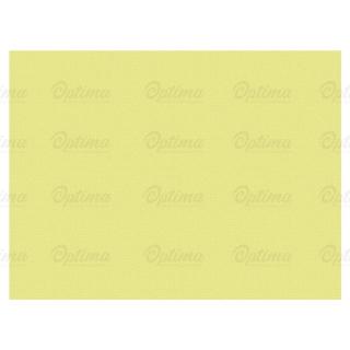 Tovaglietta di carta cm 30x40 champagne gr 50