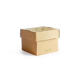 Scatola per hamburgher in cartoncino riciclato cm 12,2x4,8x10,2